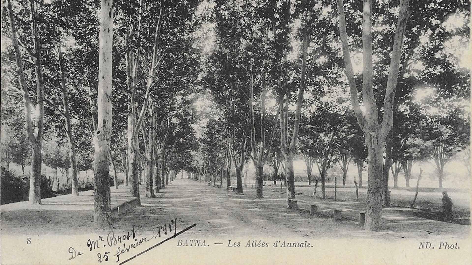 Batna-Allees-d'Aumale