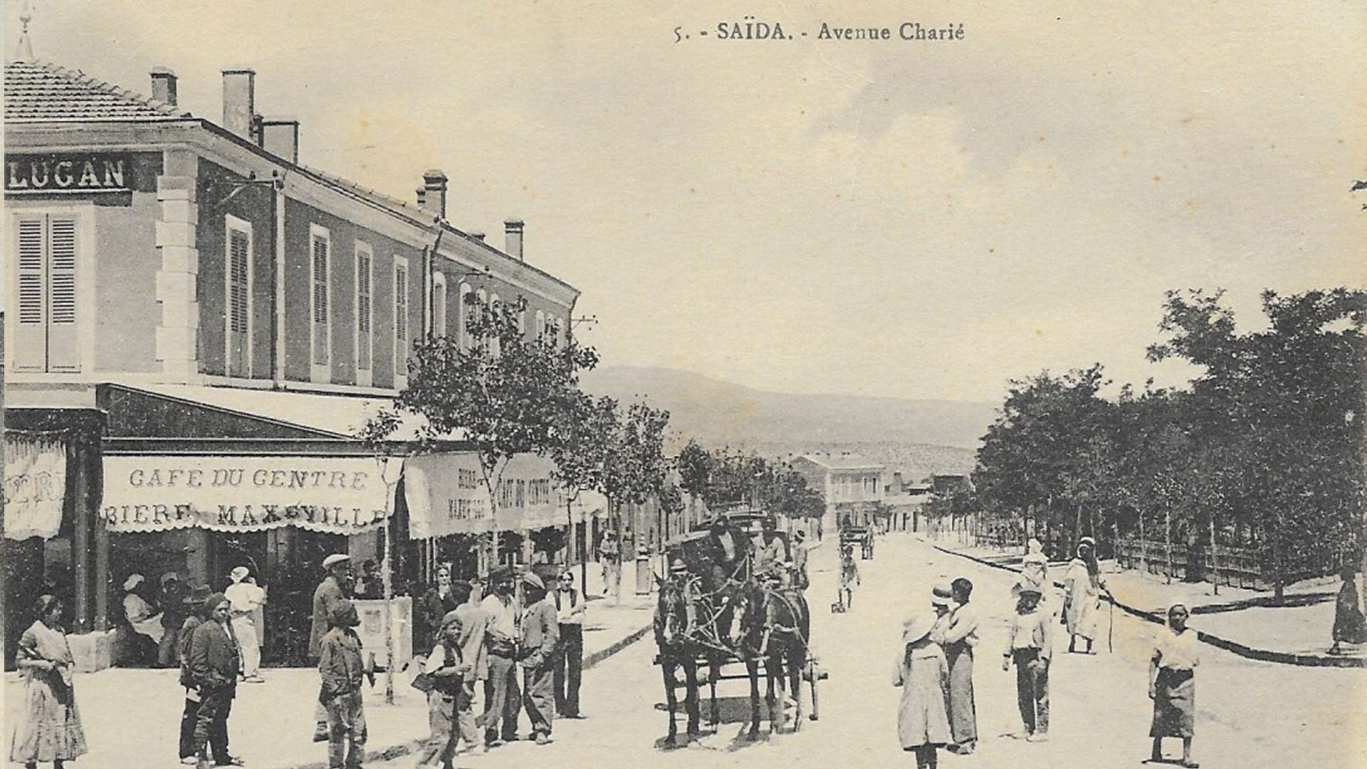 Saïda-Avenue-Charié