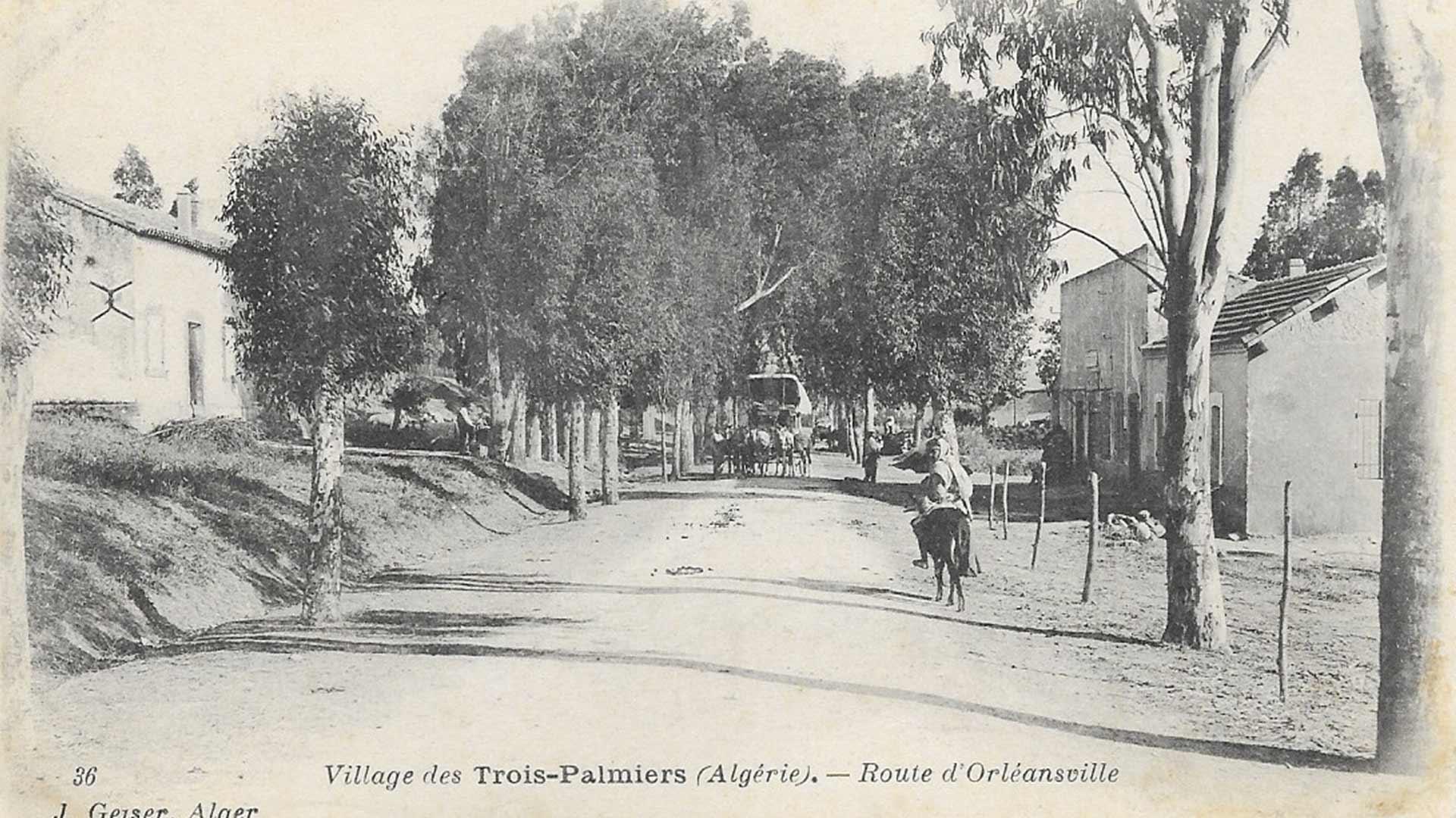 Villages-des-trois-palmiers-route-d'orleansville