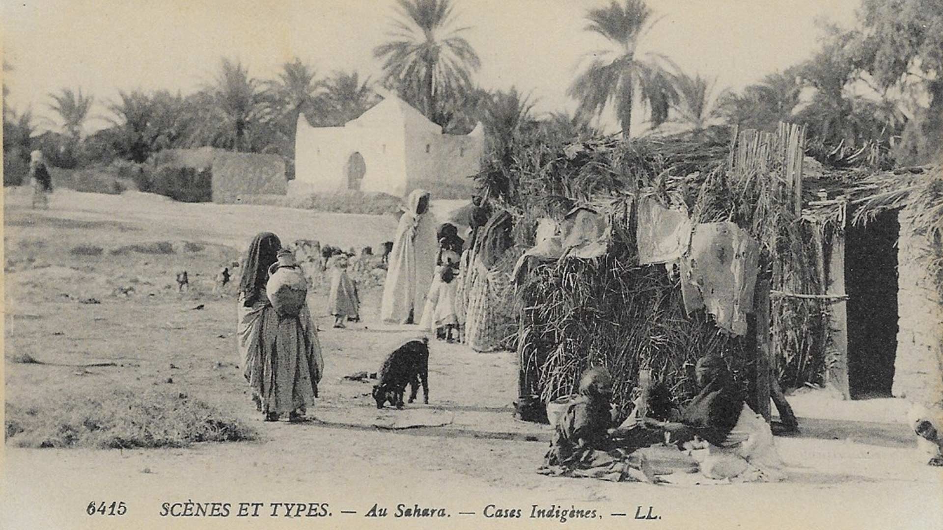 sahara-cases-indigenes